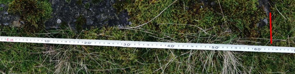 4m measure