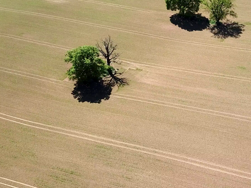 drone photography of agricultural facilities