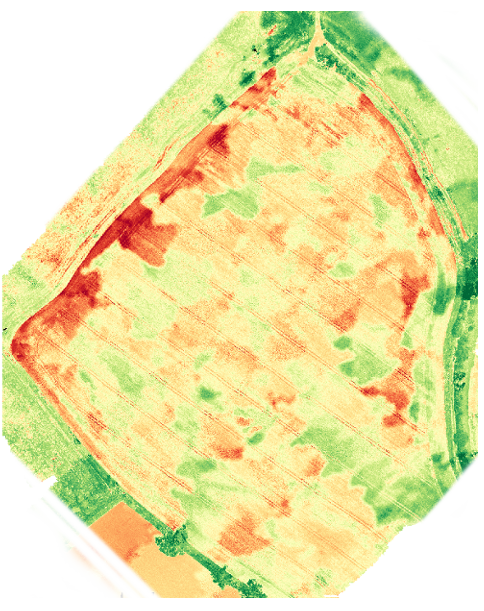 A NDVI image of a newly planted field from drone imagery