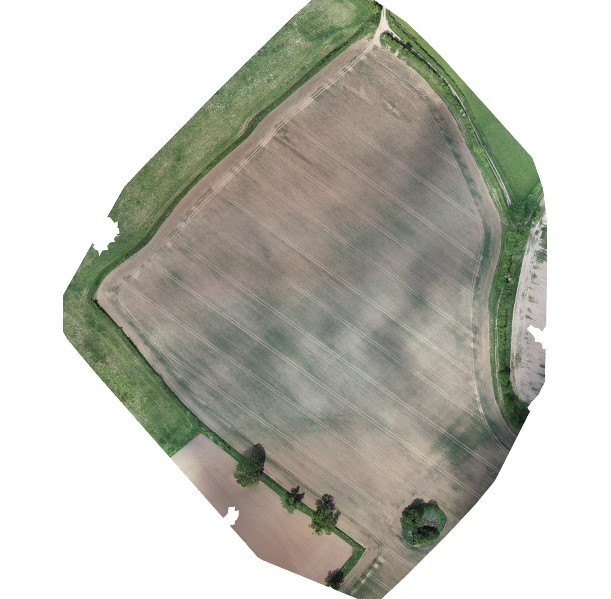 Ortho photo of anewly panted field from a drone